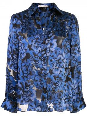 Блузка Eloise с цветочным принтом Alice+Olivia. Цвет: синий