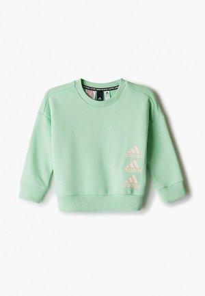 Свитшот adidas. Цвет: зеленый