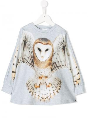 Flying Owl sweatshirt Molo. Цвет: серый