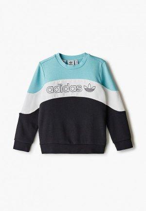 Свитшот adidas Originals. Цвет: разноцветный
