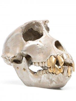 Статуэтка в виде черепа Parts of Four. Цвет: золотистый