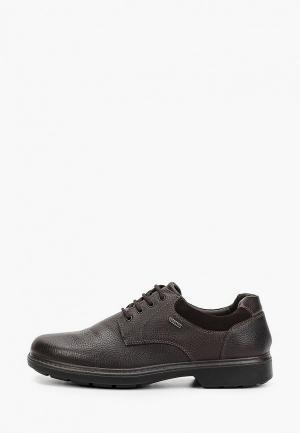 Туфли Ara. Цвет: коричневый