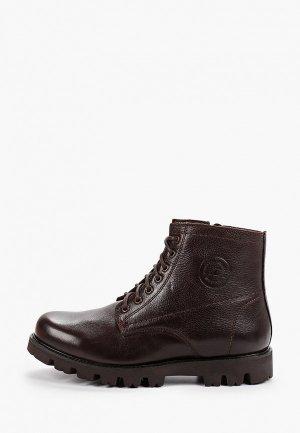 Ботинки Storm. Цвет: коричневый