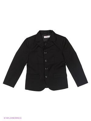 Пиджак Born. Цвет: черный
