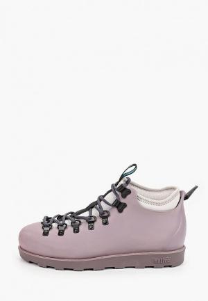 Ботинки Native. Цвет: фиолетовый