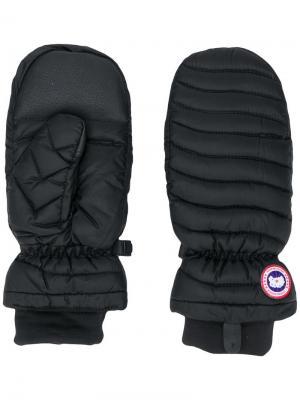 Уплотненные перчатки Canada Goose. Цвет: черный