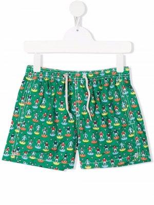 Плавки-шорты с принтом Mc2 Saint Barth Kids. Цвет: зеленый