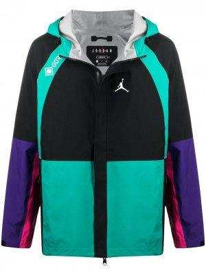 Куртка Winter Utility Gore-Tex Jordan. Цвет: черный