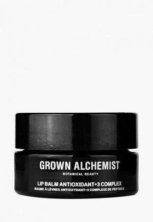Бальзам для губ Grown Alchemist. Цвет: черный