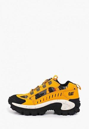 Ботинки трекинговые Caterpillar. Цвет: оранжевый