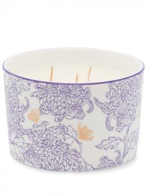 Ароматическая свеча Chrysanthemum с тремя фитилями Shanghai Tang. Цвет: фиолетовый
