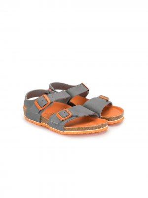 Двухцветные сандалии с пряжками Birkenstock. Цвет: серый