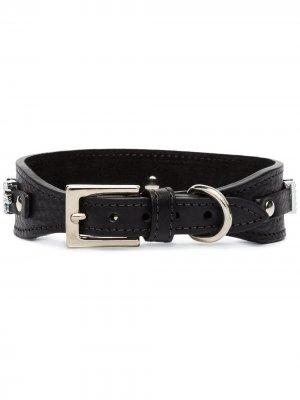Собачий ошейник Black & Brown. Цвет: черный