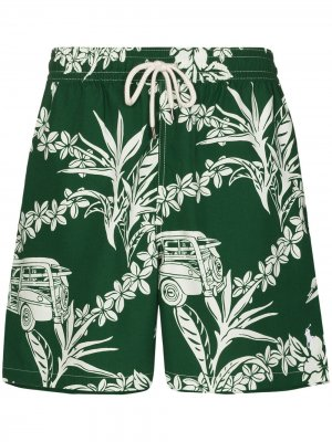 Плавки-шорты Traveller с цветочным принтом Polo Ralph Lauren. Цвет: зеленый